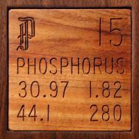 Фосфор (Phosphorus)